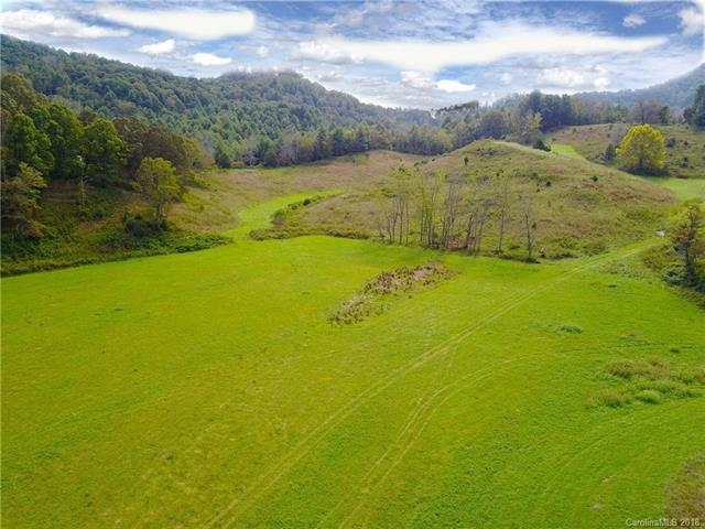 293 Sandy Mush Creek Road, Leicester, NC 28753 (#3443891) :: Odell Realty