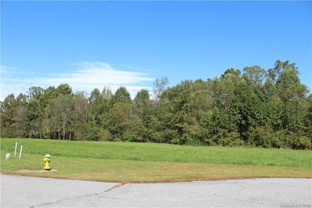 668 Skytop Farm Lane Lot 17, Hendersonville, NC 28791 (#3444806) :: Keller Williams Professionals