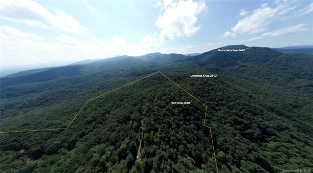 79 +/- Acres Camp Elliott Road, Black Mountain, NC 28711 (#3445532) :: Mossy Oak Properties Land and Luxury