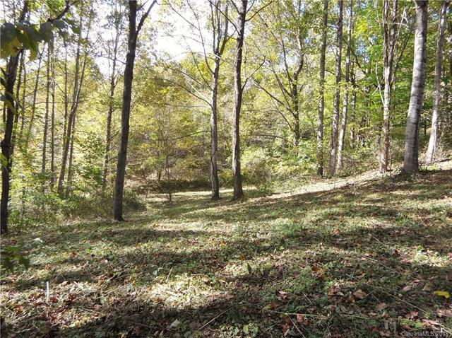 Lot 5 Sage Lane, Waynesville, NC 28785 (#3445754) :: RE/MAX Four Seasons Realty