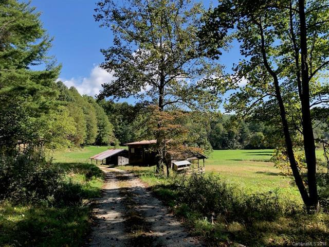 1596 Golden Road, Lake Toxaway, NC 28747 (#3445826) :: Exit Mountain Realty