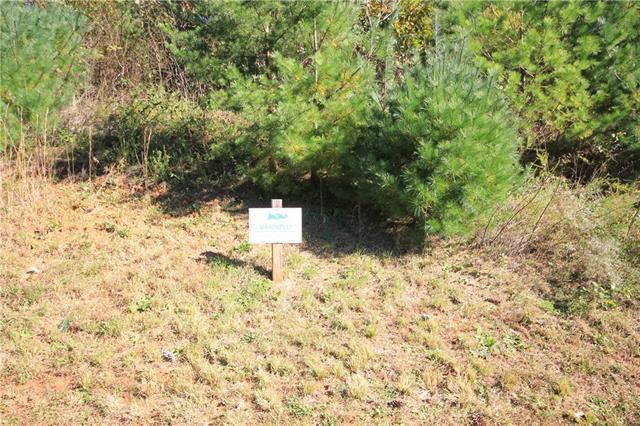 Lot# 203 Johns Ridge Parkway #203, Lenoir, NC 28645 (#3445838) :: Mossy Oak Properties Land and Luxury