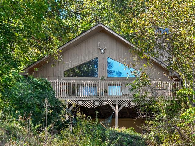 45 Hanlon Mountain Road, Leicester, NC 28748 (#3445914) :: The Andy Bovender Team