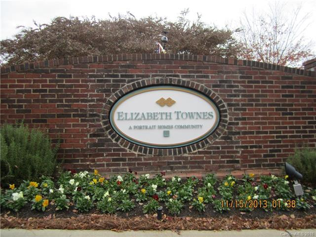 9710 Elizabeth Townes Lane #9710, Charlotte, NC 28277 (#3446157) :: The Ramsey Group