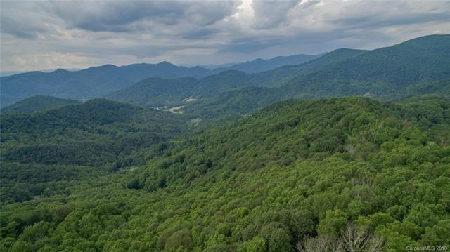 1300 Elk Mountain Scenic Highway, Asheville, NC 28804 (#3446202) :: SearchCharlotte.com