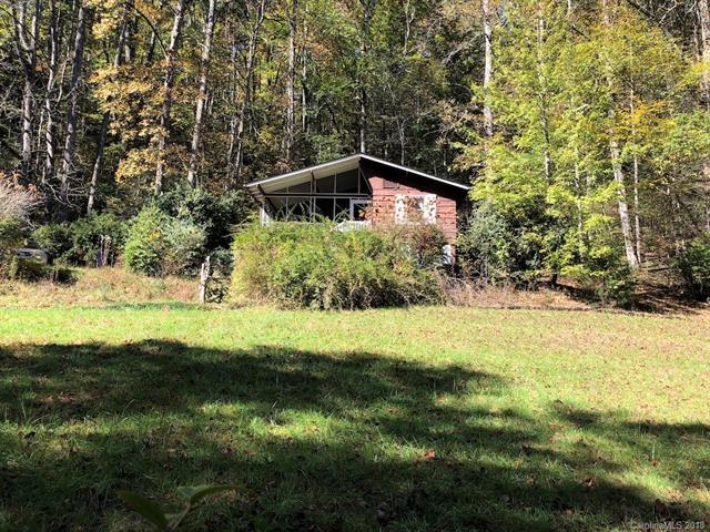 182 Robin Hood Road, Brevard, NC 28712 (#3446720) :: Puffer Properties