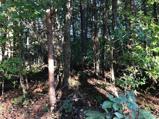 00 White Crane Road, Salisbury, NC 28146 (#3446844) :: Exit Mountain Realty