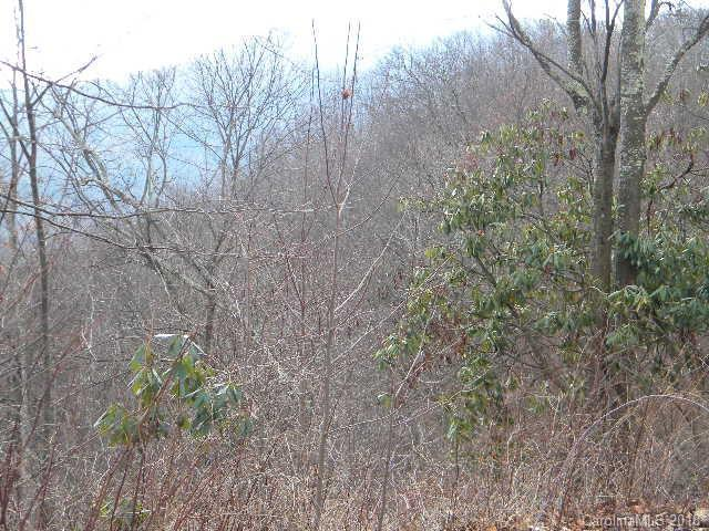 Lot 16 Dogwood Drive #16, Maggie Valley, NC 28751 (#3447329) :: Exit Mountain Realty