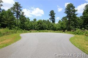 1403 Ron Whicker Drive #71, Catawba, NC 28609 (#3447348) :: LePage Johnson Realty Group, LLC
