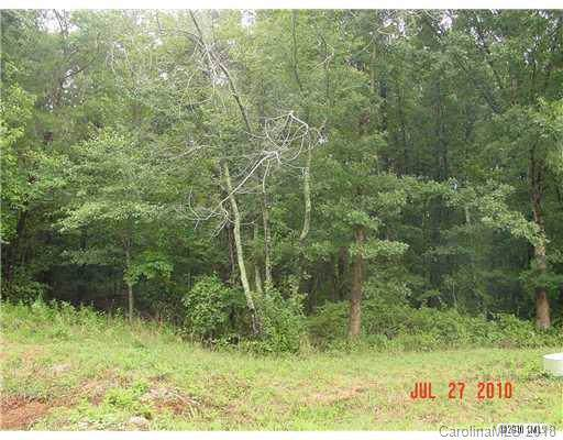 122 Dove Meadows Lane, Statesville, NC 28625 (#3447449) :: Mossy Oak Properties Land and Luxury