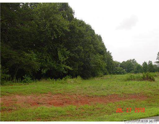 114 Dove Meadows Lane, Statesville, NC 28625 (#3447455) :: Mossy Oak Properties Land and Luxury
