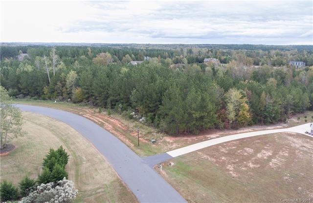 Lot 46 Catawba Shores Drive, Rock Hill, SC 29730 (#3447850) :: The Premier Team at RE/MAX Executive Realty