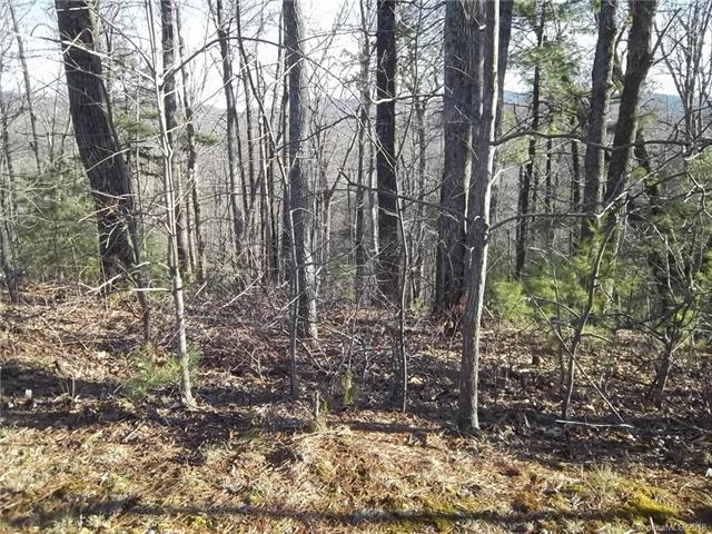 00 Glen Echo Circle Lots 92 And 94, Saluda, NC 28773 (#3448009) :: Roby Realty