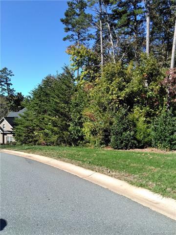 11808 Renee Savannah Lane, Charlotte, NC 28216 (#3448041) :: Besecker Homes Team