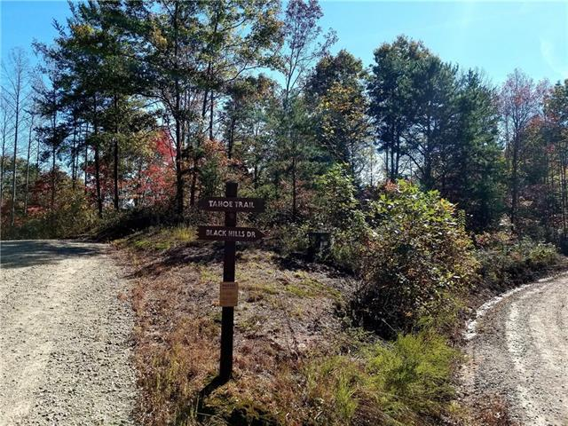 6060 Tahoe Trail #11, Collettsville, NC 28611 (MLS #3448591) :: RE/MAX Impact Realty