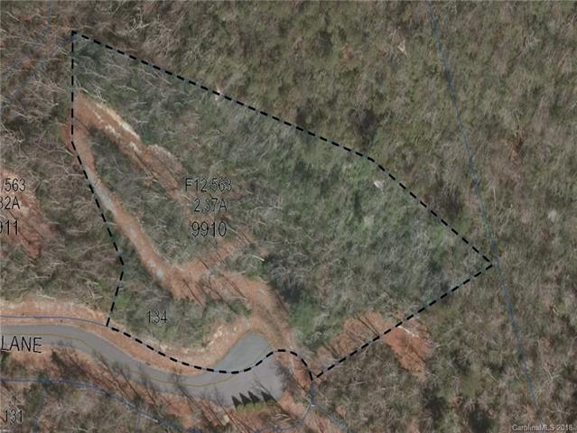 Lot 134 Green Hollow Lane, Brevard, NC 28712 (#3448794) :: The Premier Team at RE/MAX Executive Realty