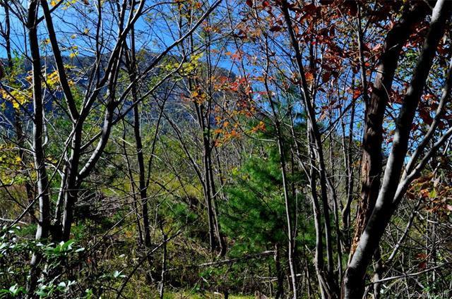 00 Marina Drive, Lake Lure, NC 28746 (#3449094) :: Exit Mountain Realty