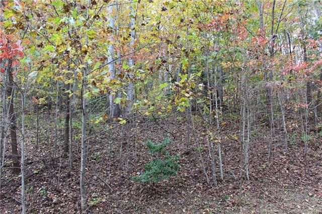 Lot 116 Atlantic Falls Trail, Black Mountain, NC 28711 (#3449313) :: Cloninger Properties