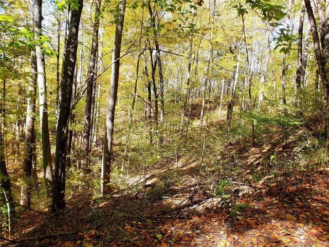 Lot 37 & Lot 47 Stoneledge Road, Hendersonville, NC 28792 (#3449315) :: High Performance Real Estate Advisors