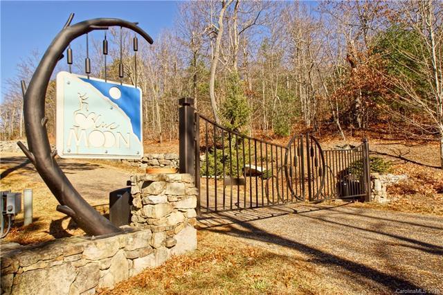 580 Sahalee Trail, Hendersonville, NC 28739 (#3449425) :: Puffer Properties
