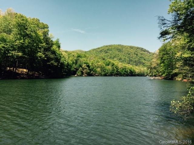 0000 Sleeping Bear Lane #8, Lake Lure, NC 28746 (#3449673) :: DK Professionals Realty Lake Lure Inc.
