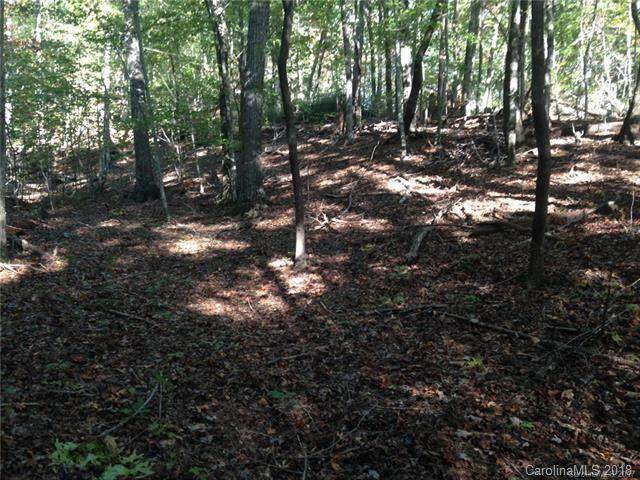 LOT 69 Cougar Lane, Saluda, NC 28773 (MLS #3449994) :: RE/MAX Journey