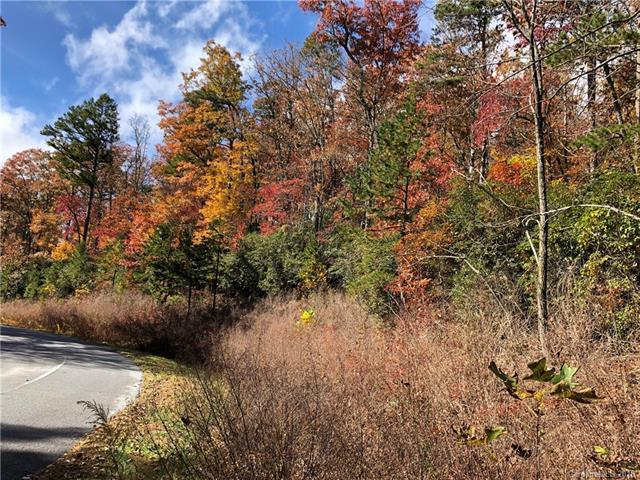 TBD Lobdell Road L45, Pisgah Forest, NC 28768 (#3450040) :: Roby Realty