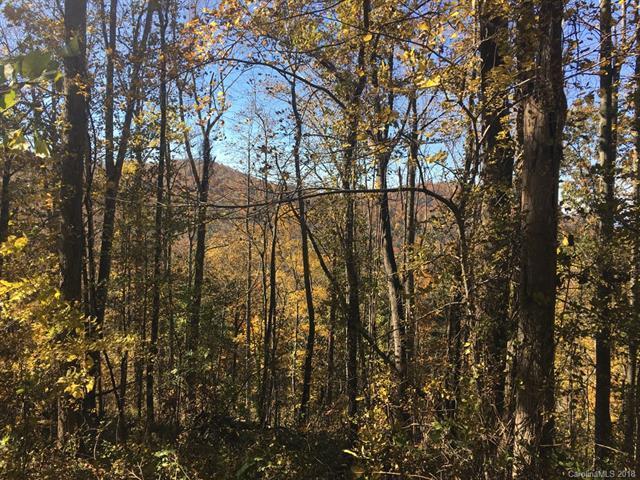 99999 Ox Creek Road, Weaverville, NC 28787 (#3450491) :: Puffer Properties