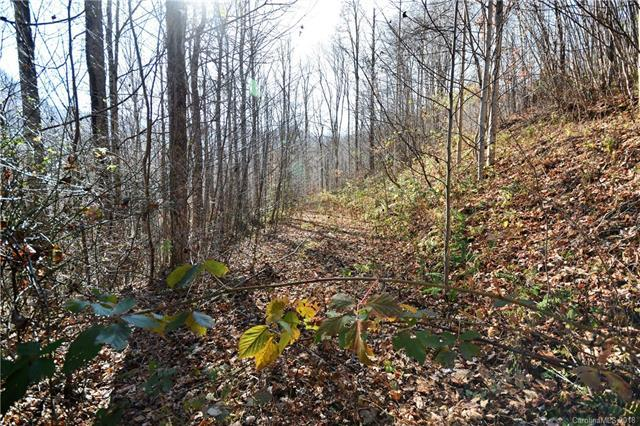 #11 Lot Davy Crockett Drive #11, Maggie Valley, NC 28751 (#3451146) :: MartinGroup Properties