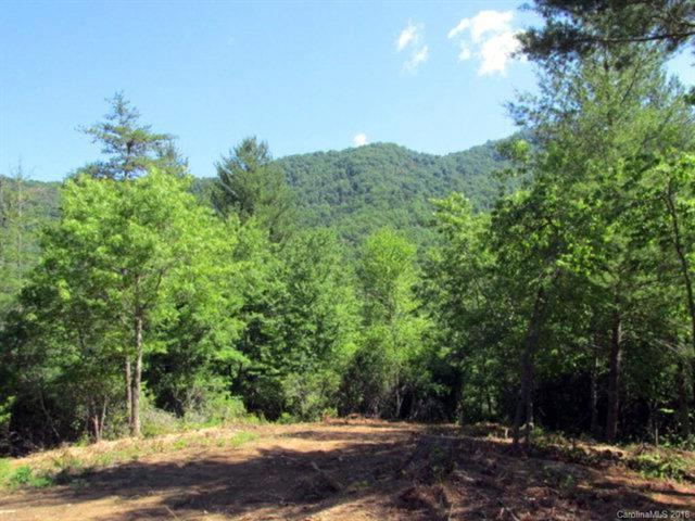 Lot 34 Lavender Way #34, Cullowhee, NC 28723 (#3451264) :: LePage Johnson Realty Group, LLC