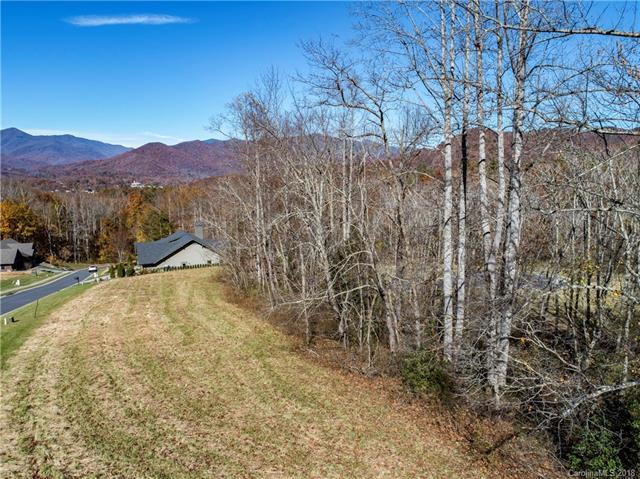 23 Cottage Settings Lane, Black Mountain, NC 28711 (#3451453) :: LePage Johnson Realty Group, LLC