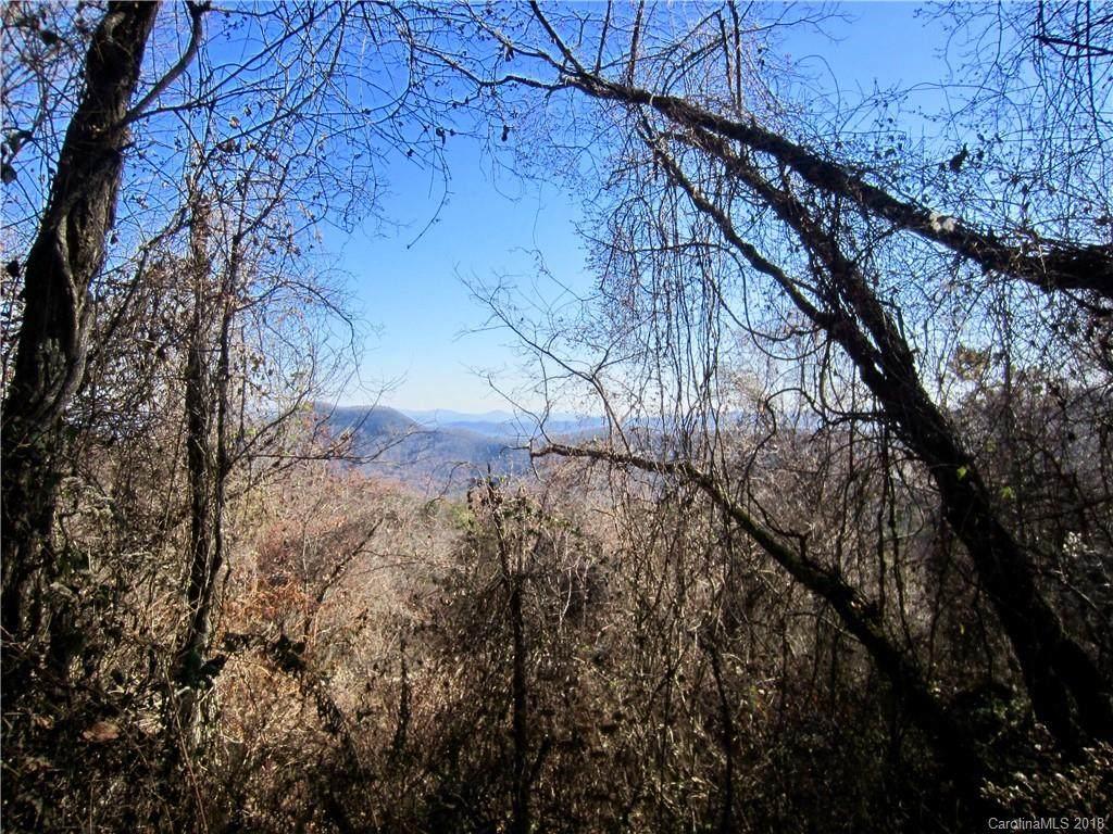 285 Bearwallow Trail - Photo 1