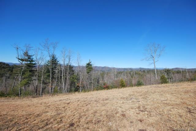 60 Peppervine Circle #60, Rosman, NC 28772 (#3452466) :: Team Southline