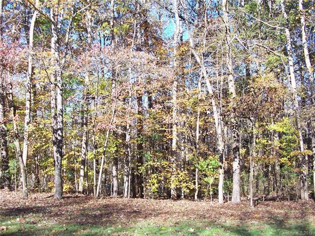 000 Lytton Farm Road, Troutman, NC 28166 (#3452482) :: MartinGroup Properties