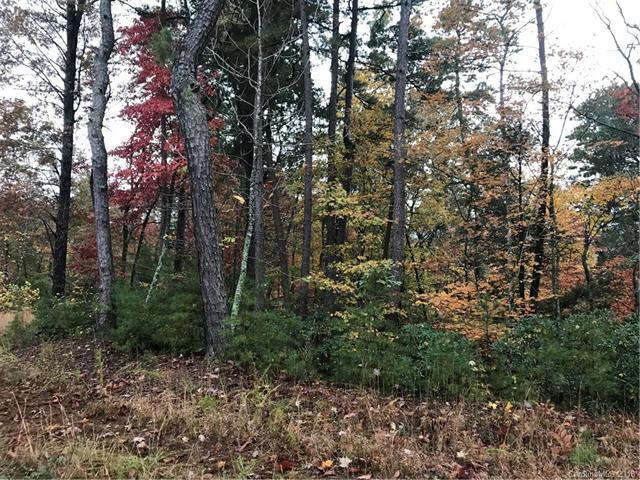 Lot 5 Echo Lane N #5, Old Fort, NC 28762 (#3452630) :: Exit Mountain Realty