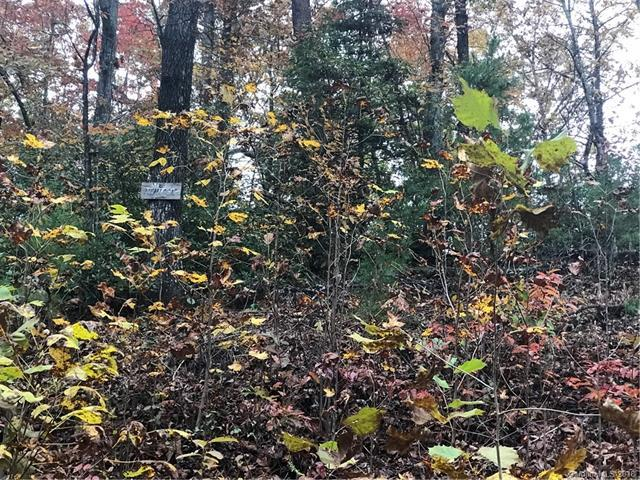 Lot 6 Riverbirch Drive #6, Old Fort, NC 28762 (#3452637) :: Exit Mountain Realty