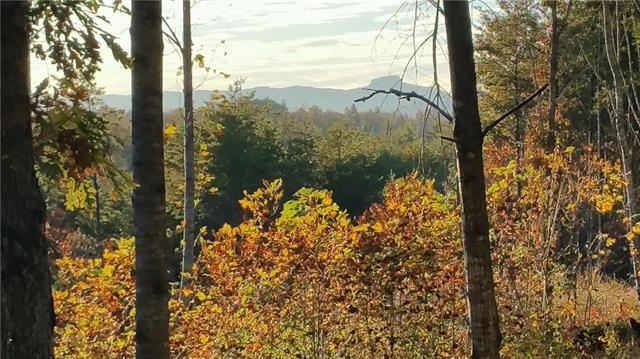Lot 913 High Valley Way, Lenoir, NC 28645 (#3452651) :: Exit Mountain Realty