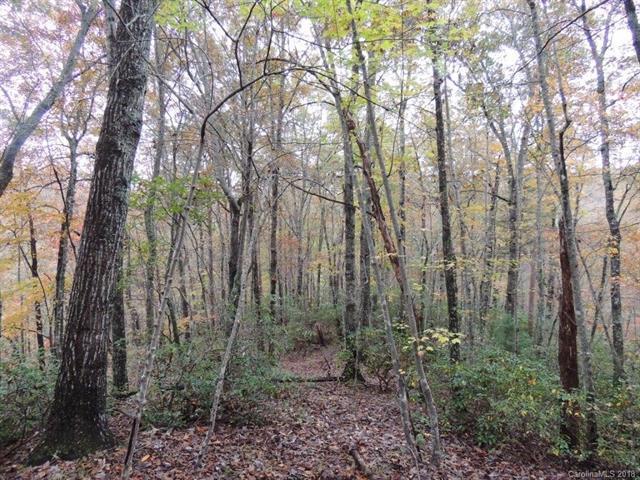 670 Island Creek Road E None, Lake Lure, NC 28746 (MLS #3452842) :: RE/MAX Journey