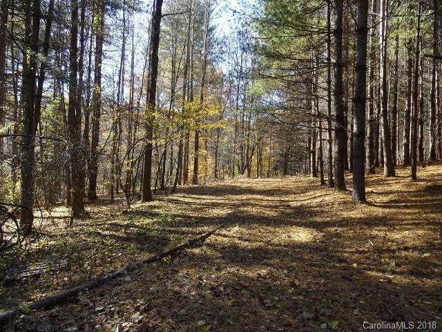 140 Bonnies Cove Trail, Mills River, NC 28759 (#3453310) :: RE/MAX RESULTS