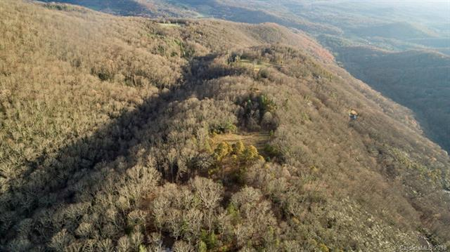 0000 Fairview Forest Drive, Fairview, NC 28730 (#3453705) :: Puffer Properties