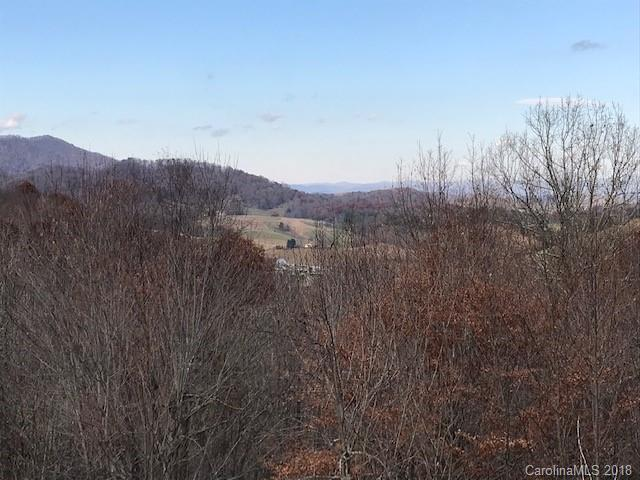 99999 Hyatt Mountain Drive, Leicester, NC 28748 (#3453711) :: RE/MAX Four Seasons Realty