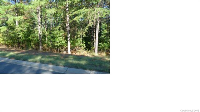 3028 Lake Pointe Drive #172, Belmont, NC 28012 (#3454094) :: TeamHeidi®