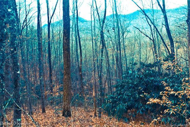 00 Turtle Creek Road #30, Sylva, NC 28779 (#3454679) :: Exit Mountain Realty
