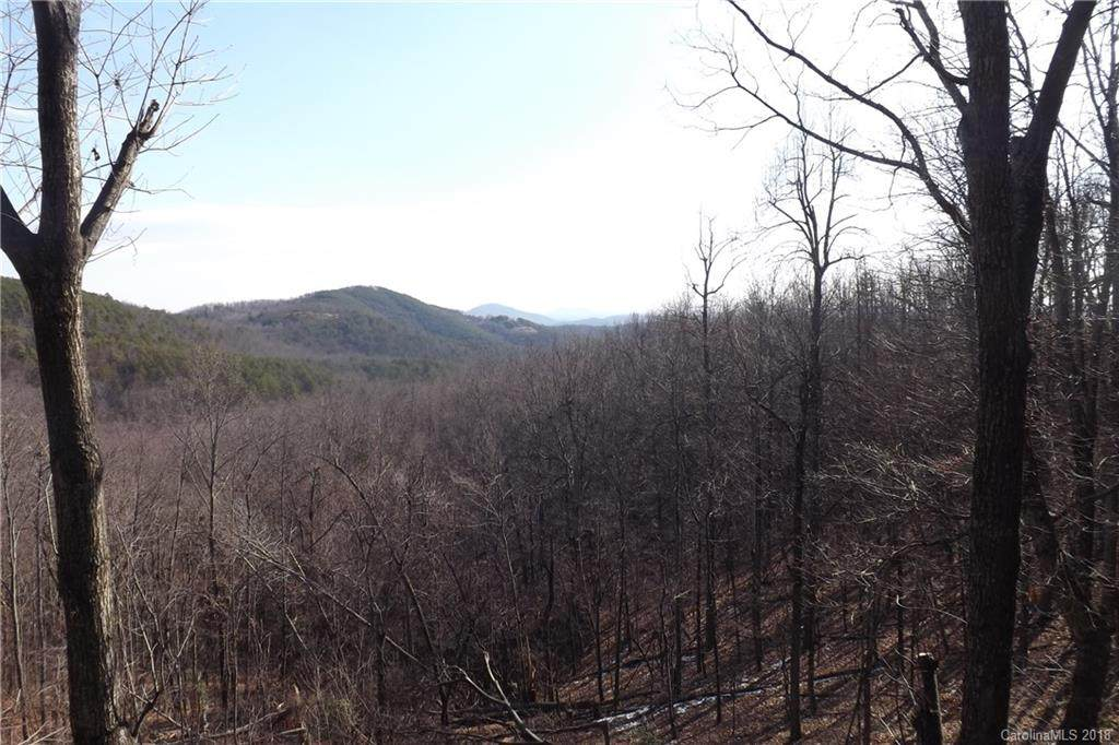 4240 High Peak Mountain Road - Photo 1