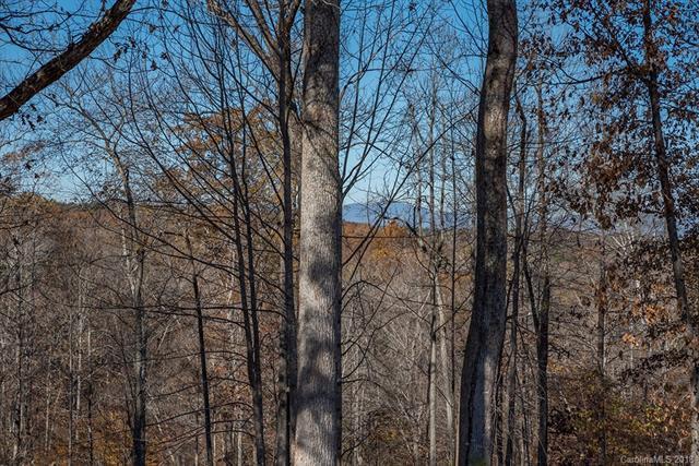 1340 Artesian Lane 12 & 13, Tryon, NC 28782 (#3454814) :: DK Professionals Realty Lake Lure Inc.