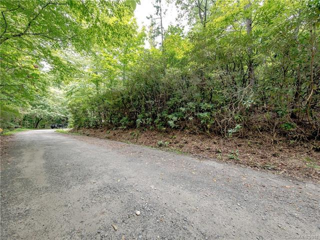 35 Buckner Road, Black Mountain, NC 28711 (#3454953) :: Puffer Properties