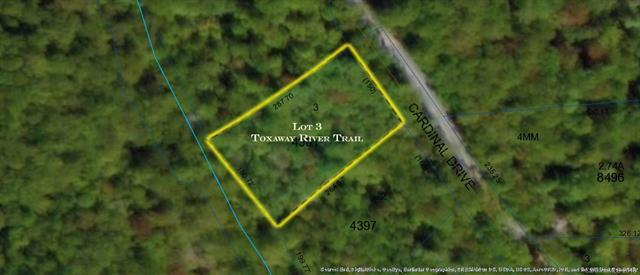 Lot 3 Cardinal Drive #3, Lake Toxaway, NC 28747 (#3455085) :: Exit Mountain Realty