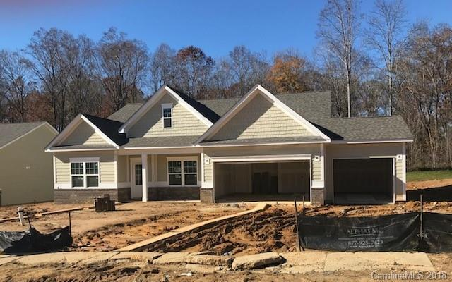 117 Bristleback Court, Mount Holly, NC 28120 (#3455561) :: Odell Realty