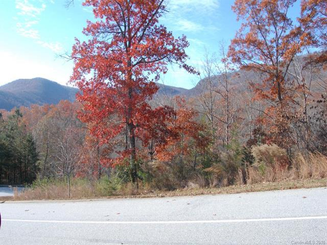 LOT 114 Deep Gap Farm Road, Mill Spring, NC 28756 (#3455990) :: Keller Williams Professionals