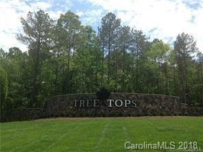 1652 Oliver Stanley Trail #716, Lancaster, SC 29720 (#3456066) :: Exit Mountain Realty